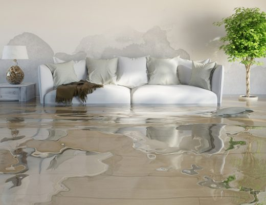 Reasons You Shouldn't Ignore Water Damage